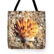 Seashell On Sandy Beach Tote Bag by Carol Groenen