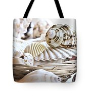 Seashells Tote Bag by Elena Elisseeva