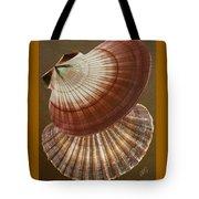 Seashells Spectacular No 53 Tote Bag by Ben and Raisa Gertsberg