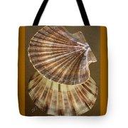 Seashells Spectacular No 54 Tote Bag by Ben and Raisa Gertsberg