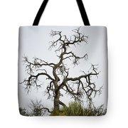 Sedona Landscape Vii Tote Bag by Dave Gordon