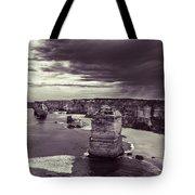 Sentinals Tote Bag by Andrew Paranavitana
