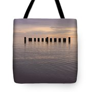 Sentinels Tote Bag by Adam Romanowicz