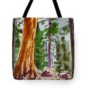 Sequoia Park - California Sketchbook Project  Tote Bag by Irina Sztukowski