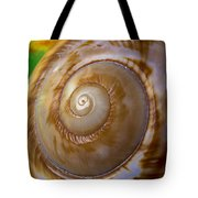Shell Spiral Tote Bag by Garry Gay