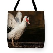 Showing Those Wings Tote Bag by Karol  Livote