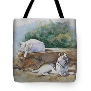 Siesta time Tote Bag by Suzanne Schaefer