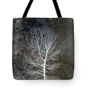 Silent Night Tote Bag by Carol Leigh
