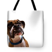 Silly Boxer Dog Tote Bag by Stephanie McDowell