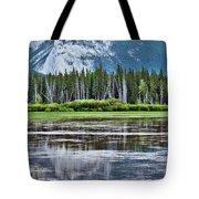 Silver Reflections Tote Bag by Linda Sannuti