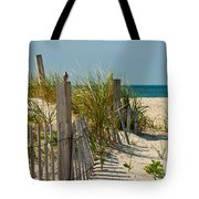 Singer At The Shore Tote Bag by Michelle Wiarda