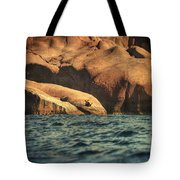 Siren Rocks II Tote Bag by Taylan Apukovska