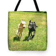 Sisters Tote Bag by Donna Doherty