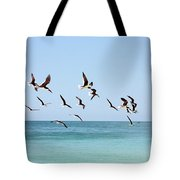 Skimmers And Swimmers Tote Bag by Carol Groenen