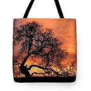 Sky On Fire Tote Bag by Priya Ghose