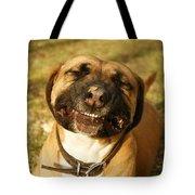 Smiling Tote Bag by Kristia Adams