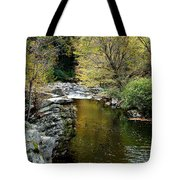 Smoky Mountian River Tote Bag by Sandy Keeton