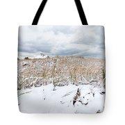 Smuggler's Beach Snow Cape Cod Tote Bag by Michelle Wiarda