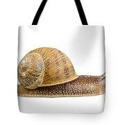 Snail Tote Bag by Elena Elisseeva