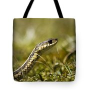 Snake Encounter Close-up Tote Bag by Christina Rollo