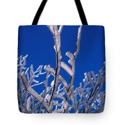 Snow And Ice Coated Branches Tote Bag by Anonymous