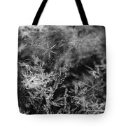 Snow Constellation Tote Bag by Rona Black