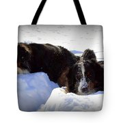 Snow Eaters Tote Bag by Patti Whitten