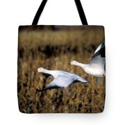 Snow Geese Tote Bag by Steven Ralser