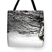 Snow Scene 5 Tote Bag by Patrick J Murphy