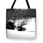 Snow Scene 6 Tote Bag by Patrick J Murphy
