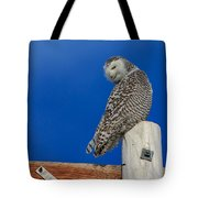 Snowy Owl Tote Bag by Everet Regal