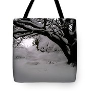 Snowy Path Tote Bag by Amanda Moore
