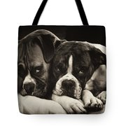 Snuggle Bug Boxer Dogs Tote Bag by Stephanie McDowell