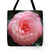 Soft and Pink Tote Bag by Suzanne Gaff
