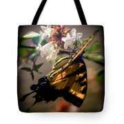 Soft As The Morning Light Tote Bag by Karen Wiles