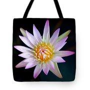 Soft Lullabye Tote Bag by Karen Wiles