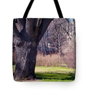 Soft Rosy Spring In The Garden Tote Bag by Jenny Rainbow