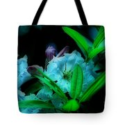 Softness Tote Bag by Cheryl Young