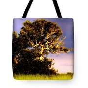 Sounds Of Topsail Tote Bag by Karen Wiles