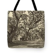 Southern Lane Sepia Tote Bag by Steve Harrington