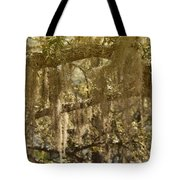 Spanish Moss On Live Oaks Tote Bag by Christine Till