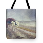 Spindrift Tote Bag by John MacWhirter