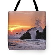 Splash  Tote Bag by Marcia Colelli
