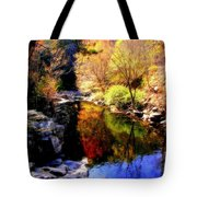 Splendor Of Autumn Tote Bag by Karen Wiles
