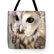 Spotted Owl Tote Bag by Shoal Hollingsworth