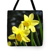 Spring Floral Art Prints Glowing Daffodils Flowers Tote Bag by Baslee Troutman