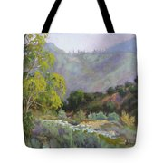 Spring Sycamore Tote Bag by Sharon Weaver