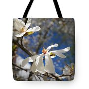 Spring Trees 1 Tote Bag by Allan Morrison
