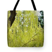 Spring Weeping Willow Tote Bag by Will Borden