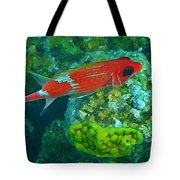 Squirrel Fish Tote Bag by John Malone
